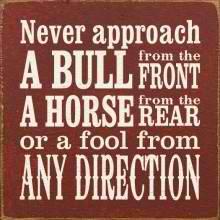 avoid fools