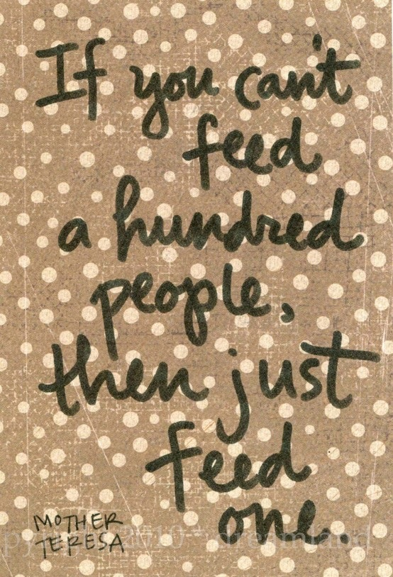 feed one jpg