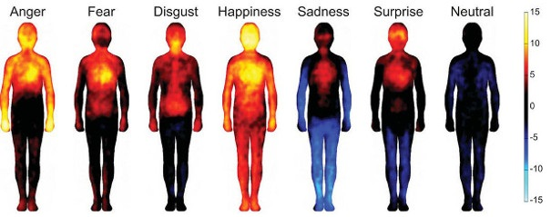 emotions and body mapping 2